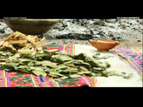 Coca e Identidad Cultural en la Región Andina