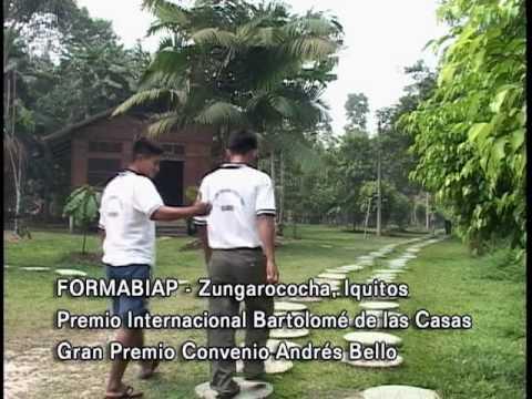 El Derecho a una educación Bilingüe Intercultural